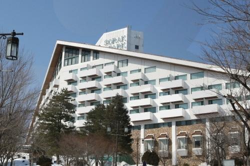 Hotel Sorak Park (호텔...