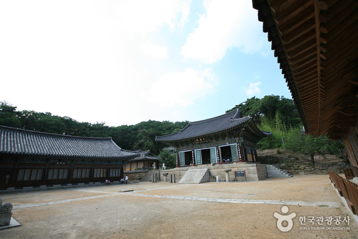 Donghwasa Temple (동화...