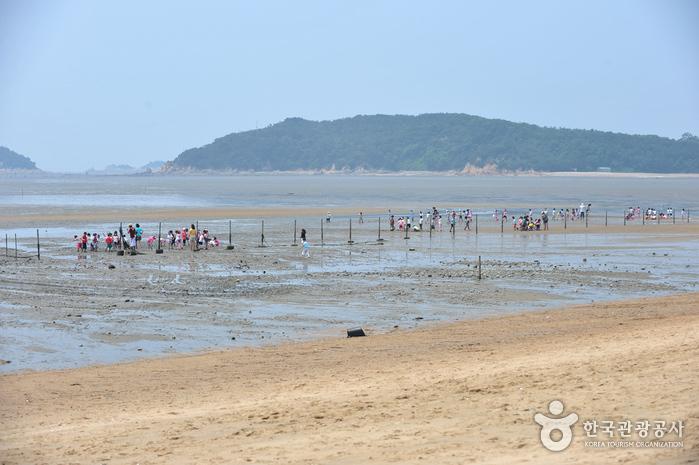 Морское побережье Масиан на острове Ёнчжондо (영종도 마시안해변)7