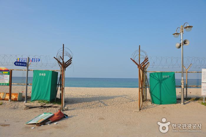 Пляж Ёнгок (연곡해변(연곡해수욕장))7