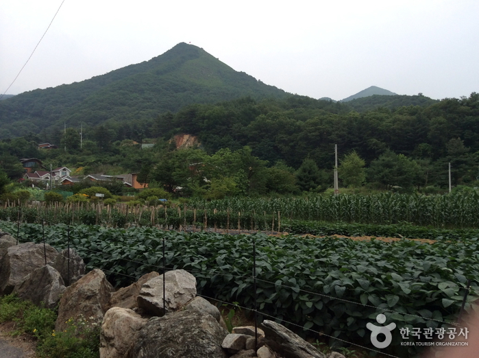 Baegunbong Peak (백운봉)