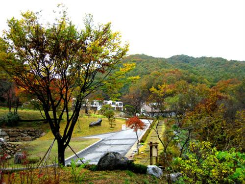 Healience Zen Village (힐리언스 선마을)