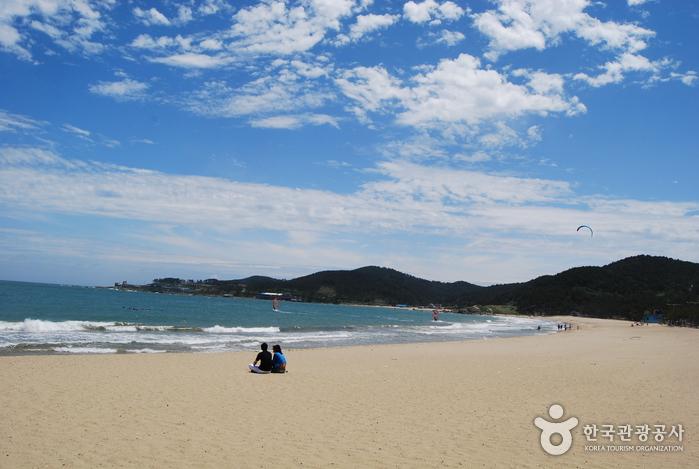 Jinha Beach (진하해수욕장)