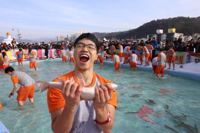 평창윈터페스티벌 (평창송어축제,대관령눈꽃축제) 2018  사진1
