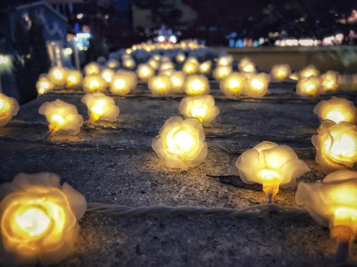러브인 프로방스 빛축제 2018 사진24