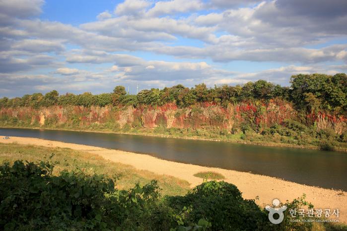 임진강 주상절리 (한탄강 국가지질공원)