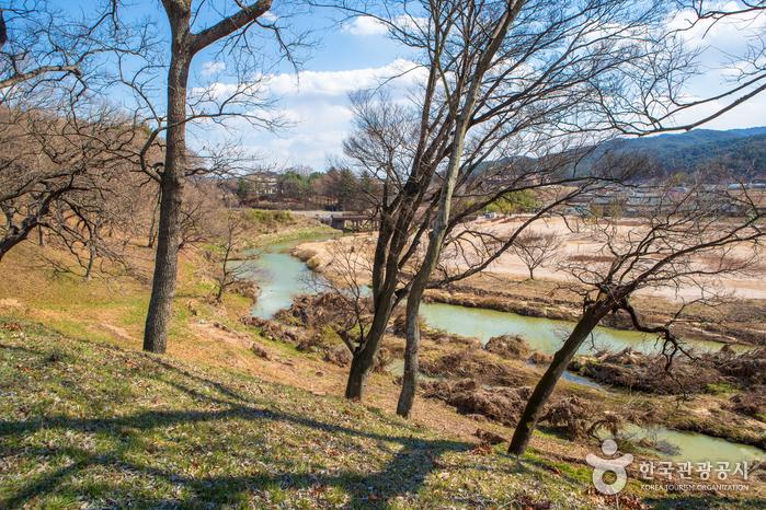 Gyeongju Wolseong Palace Site (Banwolseong Fortress) (경주 월성(반월성))