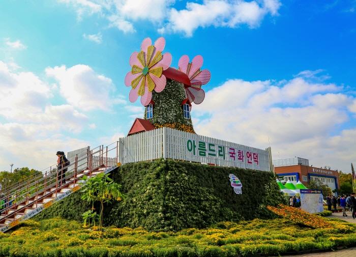 益山 千万本菊祭り(익산천만송이국화축제)