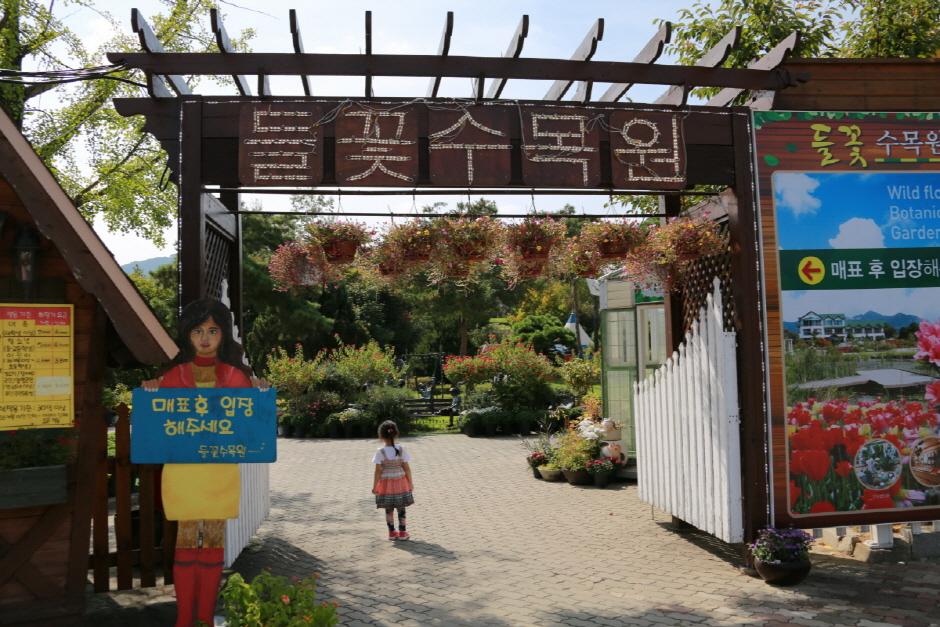 楊平野花樹木園(양평 들꽃수목원)