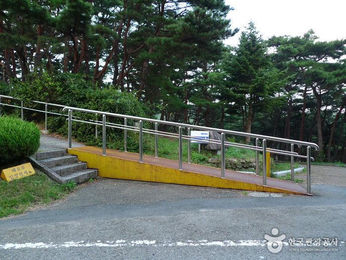 Tomb of General Kim Yusin (경주 김유신묘)
