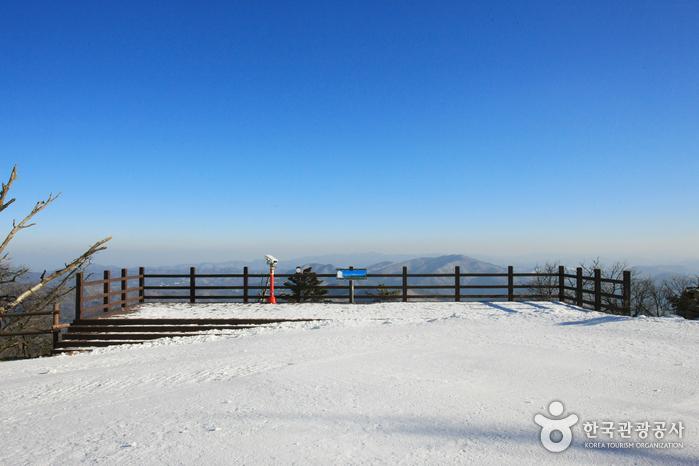 龍平渡假村滑雪場(용평리조트 스키장)