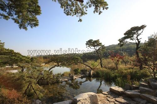 Traumwald im Norden Seouls (북서울 꿈의 숲)