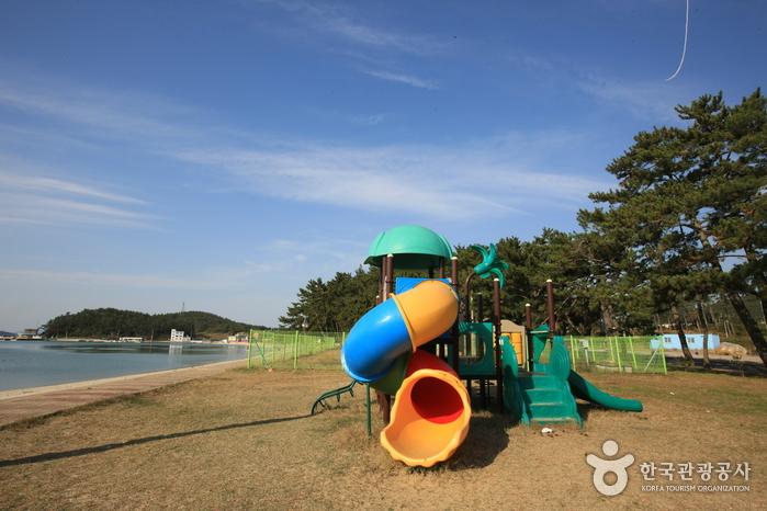 Пляж Сонхо (송호해수욕장)20