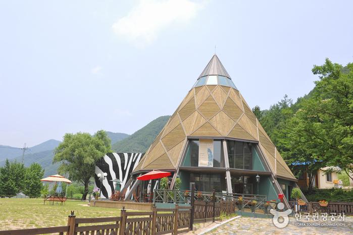 영월아프리카미술박물관
