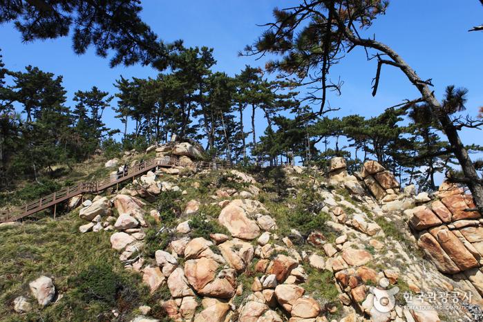 Парк Тэванам (대왕암공원)8
