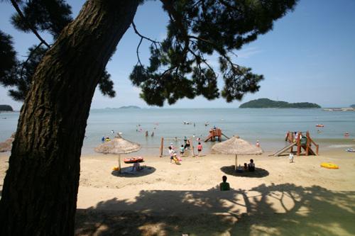 Пляж Сонхо (송호해수욕장)24