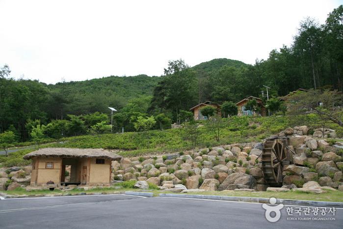 Soseonam Natural Forest (소선암자연휴양림)