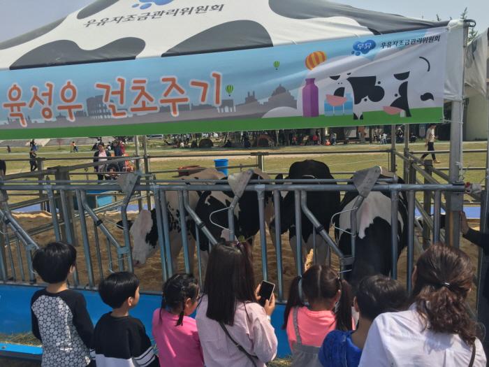 우유의 날&국내산 치즈 페스티벌 2019