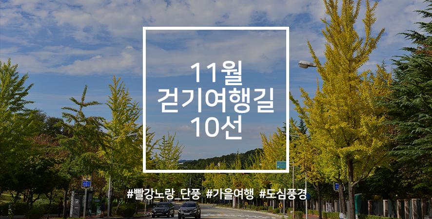 한국관광공사 추천 11월 걷기여행길, 빨갛게 노랗게 물든 가을을 만끽하러 가는 길 사진