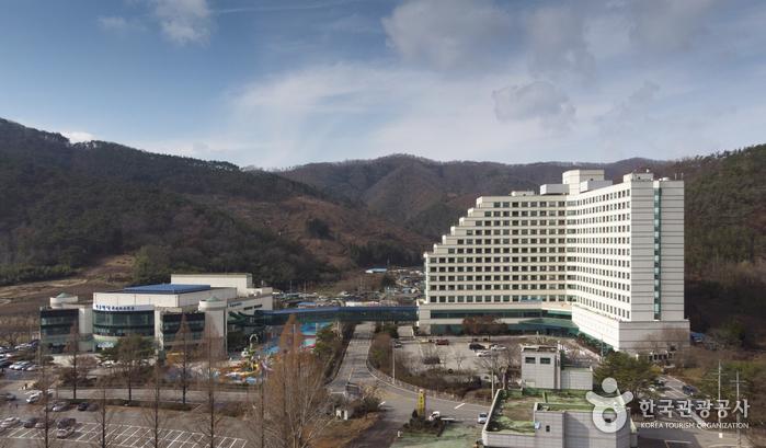 錦湖リゾート[韓国観光品質認証](금호리조트 [한국관광품질인증/Korea Quality])