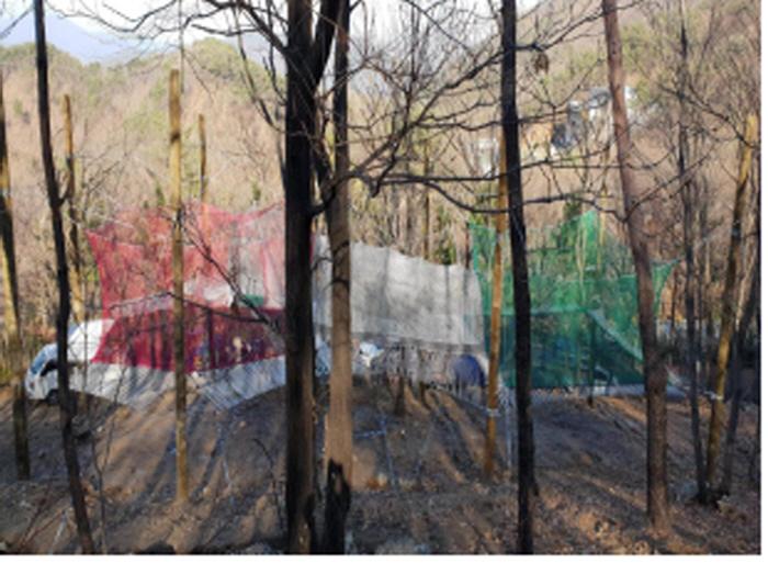 대운산자연휴양림 네트어드벤처