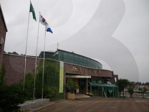 Citrus Museum (감귤박물관...