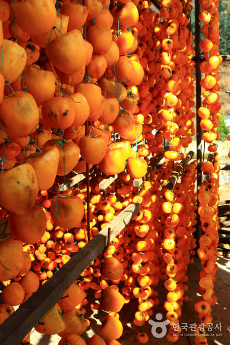 Yeongdong Dried Persimmons Festival ()