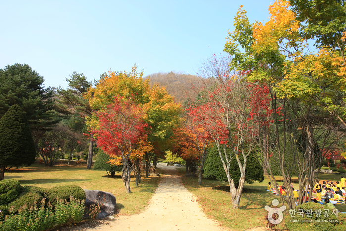 Eco Green Campus (Formerly Samyang Ranch) (에코그린 캠퍼스 (삼양목장))
