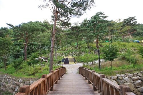 검봉산자연휴양림