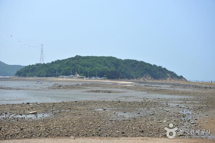 Jamjindo Island (잠진도)