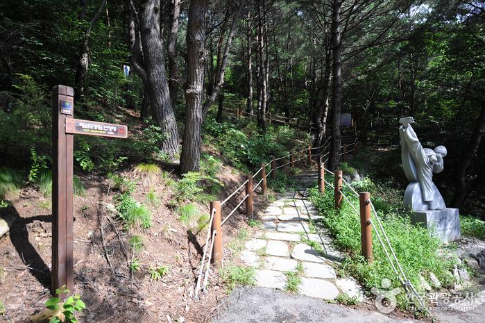 Taekwondowon Observatory (태권도공원 전망대)
