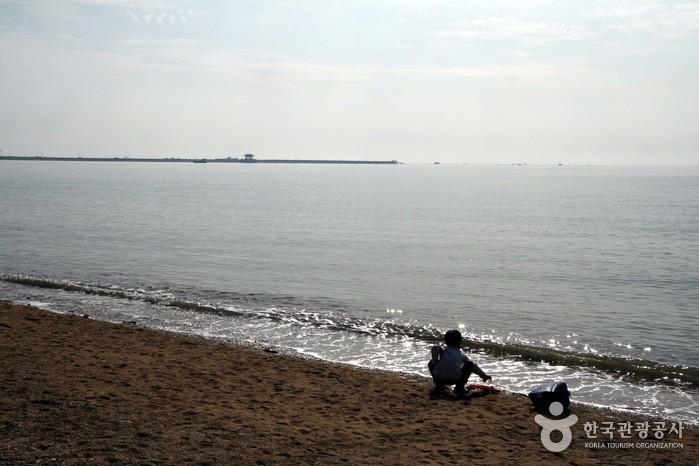 궁평리 해수욕장