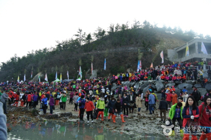 Jindo Miracle Sea Road Festival (진도 신비의바닷길축제)