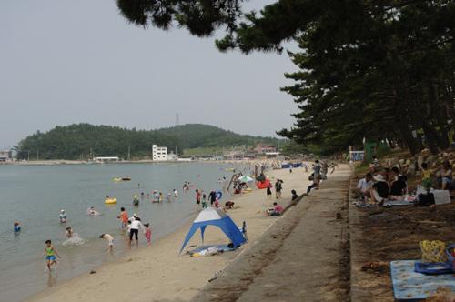 Пляж Сонхо (송호해수욕장)25