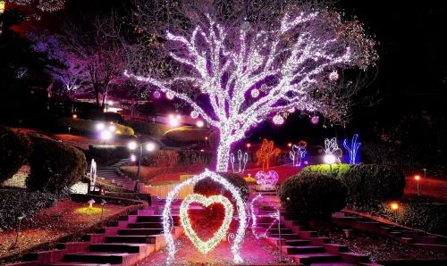 이월드 별빛축제 사진26
