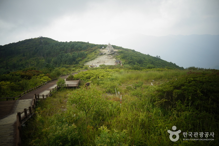 Jirisan National Park (Jirisan Mountain Nogodan Peak) (지리산국립공원 [지리산 노고단])