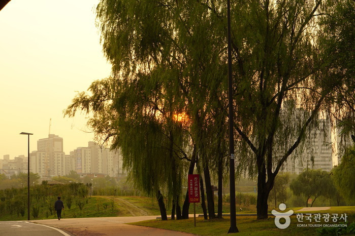 Yanghwa Hangang Park (한강시민공원 양화지구(양화한강공원))