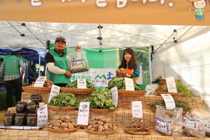 楊平 龍門山山菜祭り(양평 용문산 산나물축제)