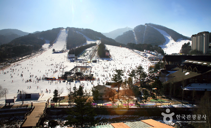 Yongpyong Resort Ski...