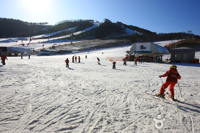 Alpensia Resort Pyeongchang (  )