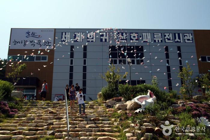 蔚山海洋博物館(울산해양박물관)
