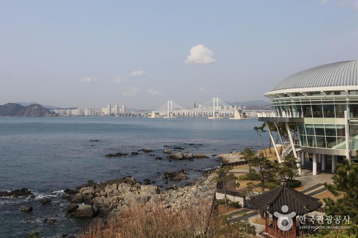 Остров Тонбэксом на Хэундэ (해운대 동백섬)4
