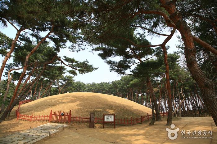 Парк с королевскими захоронениями Сончжоннын (서울 선릉과 정릉)3