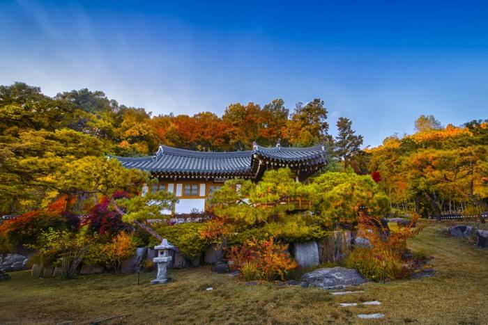 Joseon Wangga [Korea Quality] / 농업회사법인 조선왕가 주식회사 [한국관광 품질인증]