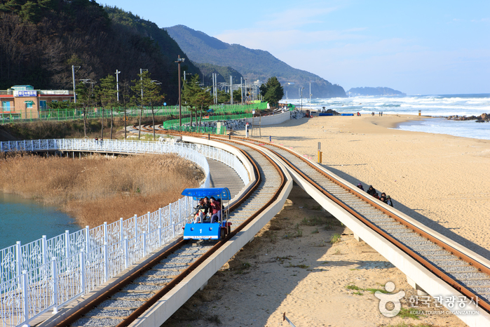 Jeongdongjin Railbike (정동진 레일바이크)