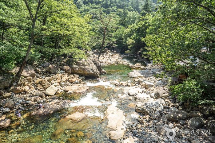 Daewonsagyegok Valley (대원사계곡)
