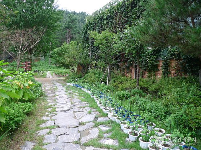 Daecheongho Natural Ecology Center (대청호자연생태관)