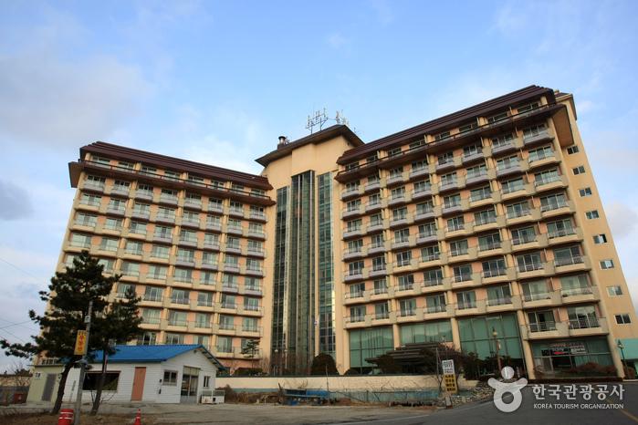 金剛山公寓式飯店(금강산콘도)