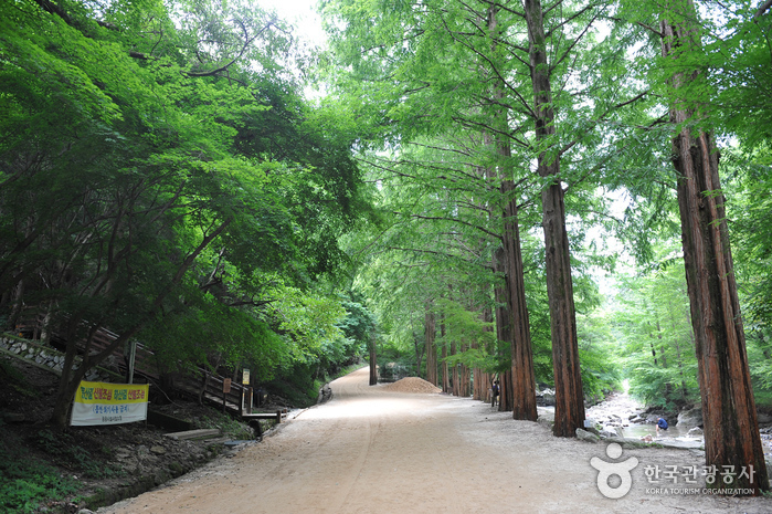 Gangcheonsan County Park ()