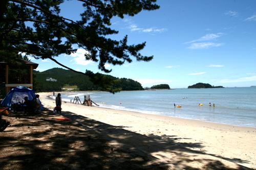 Пляж Сонхо (송호해수욕장)26